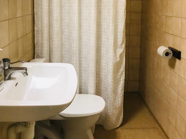 toalett med dusch och handfat