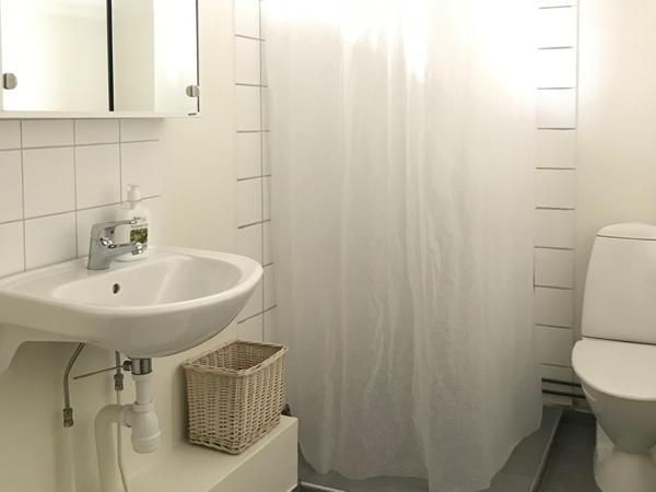 badrum med dusch, handfat och toalett